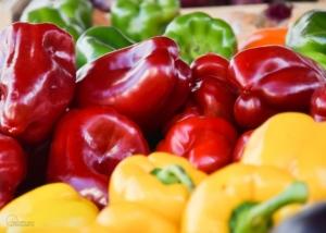 Photographe Culinaire: Poivrons rouges jaunes verts