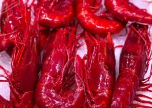 Photographe Culinaire: Ecrevisses au marché central de Valence Espagne