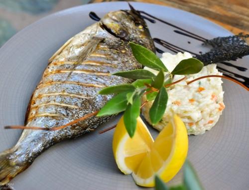 Restaurant U Fornu – Calvi – Corse – Daurade et son risotto
